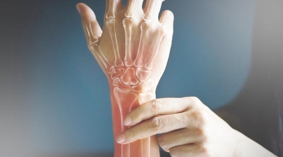Bone Muscle Crosstalk