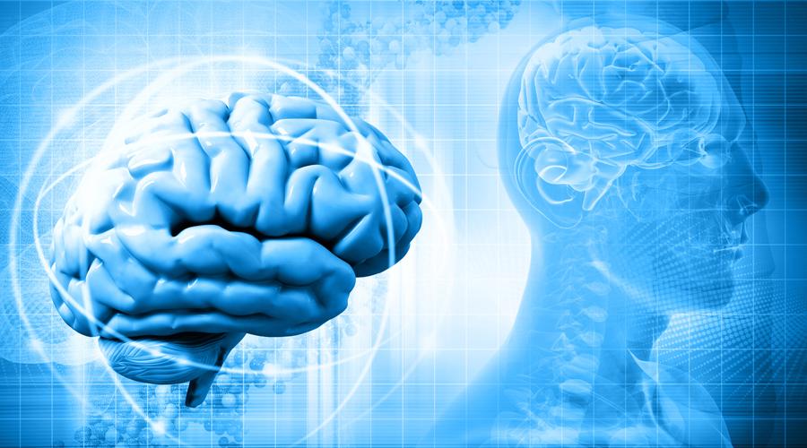 b vitamin brain